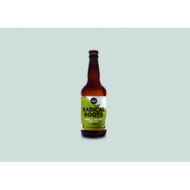 Ginger Pale Ale, organic, 50 cl.